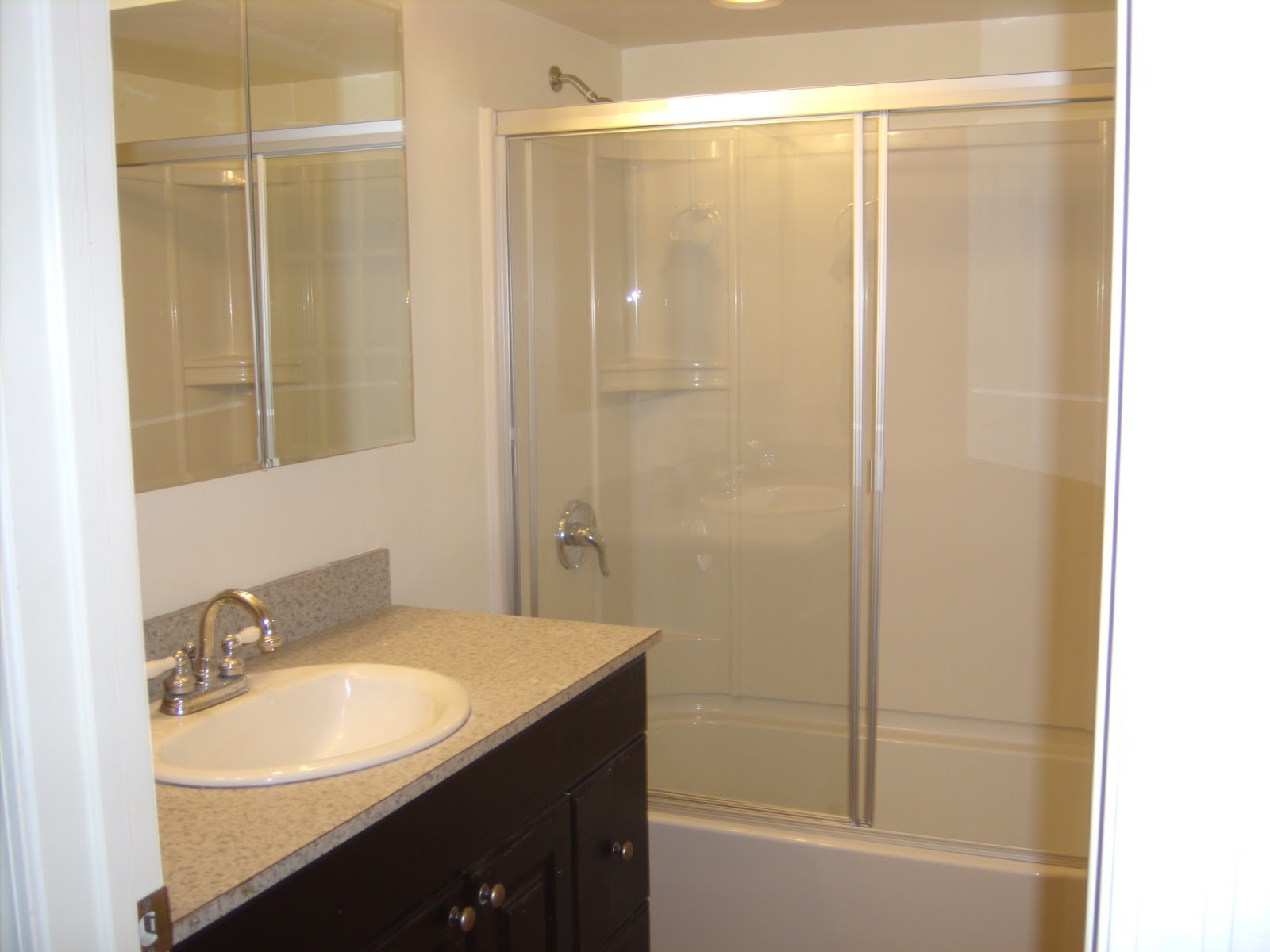 The Perpetual Remodeler: Bathroom Remodel