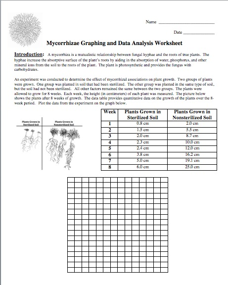 Printables Analyzing Data Worksheet analyzing data worksheet imperialdesignstudio is given students graph the and answer 8 analysis