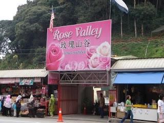 rose+valley+cameron+highland+gate.jpg