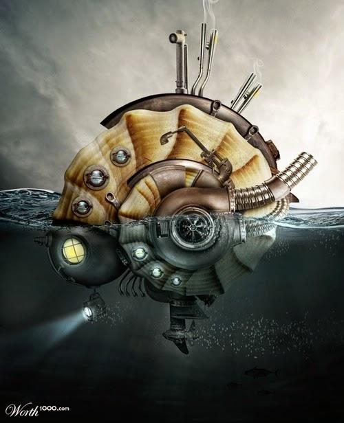 14-Sea-Shell-Explorer-Designer-&-Illustrator-Marcus-Aurelius-www-designstack-co