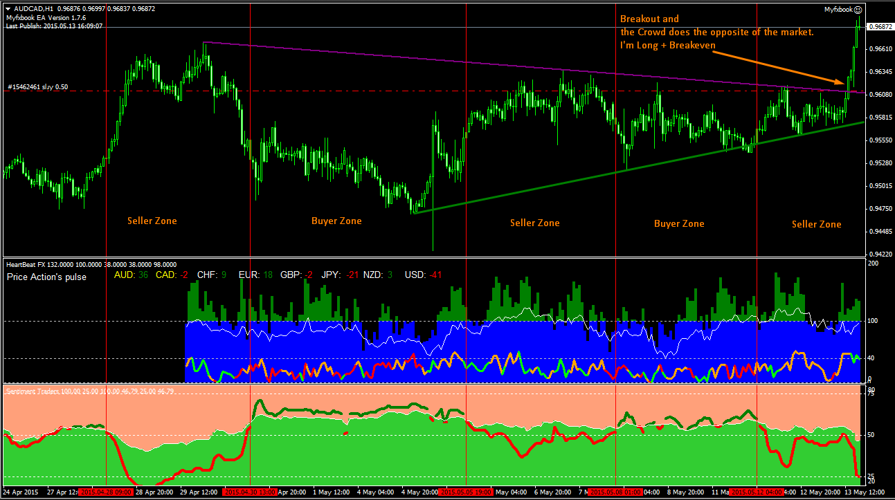 How to read forex market sentiment