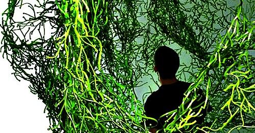 rmre r f rences mod les rep res et echantillons les algues des fr res bouroullec. Black Bedroom Furniture Sets. Home Design Ideas