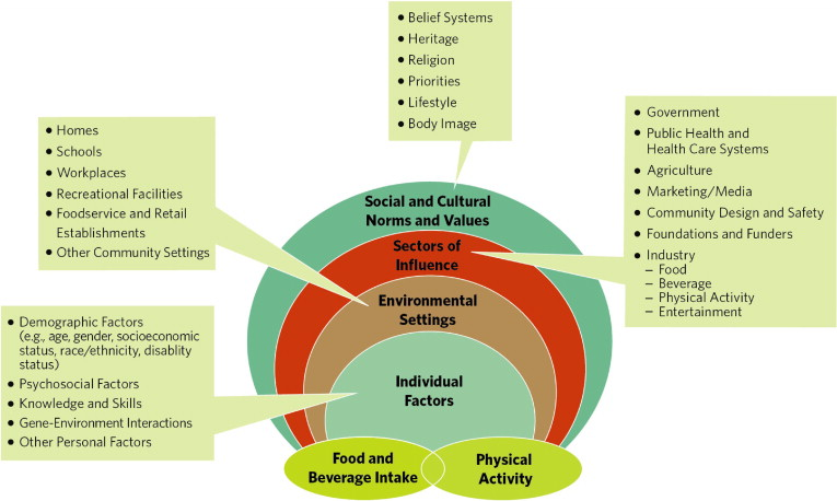 analysis of the schools physical environment Objectives we examined whether certain characteristics of the social and physical environment influence a child's mode of travel between home and school methods students aged 11 to 13 years from 21 schools throughout london, ontario, answered questions from a travel behavior survey a geographic.