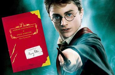 O mundo mágico de Harry Potter está de volta em nova franquia de filmes.