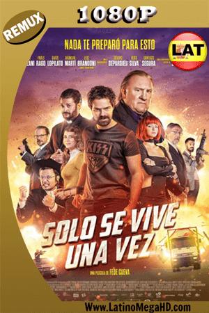 Sólo Se Vive Una Vez (2017) Latino HD REMUX 1080P ()