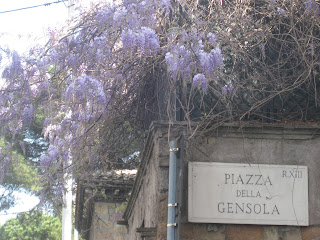 Wisteria on a street corner in Rome