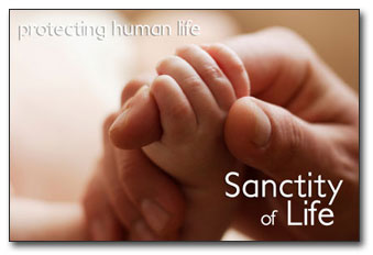 all human life sacred Human life is sacred all men must recognize that fact from the very inception, it reveals the creating hand of god those who violate his laws not only offend the divine majesty but degrade themselves and humanity.