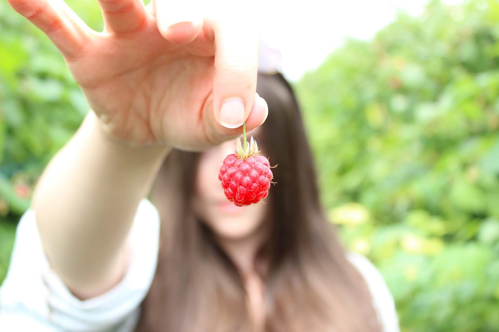 Summer: Berry Picking