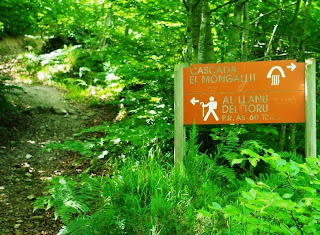 Caso, ruta a la cascada del Mongayu, desvío al Llanu´l Toru