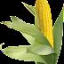 Mısır png indir , corn png image
