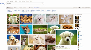 Bing Pinterest Pin