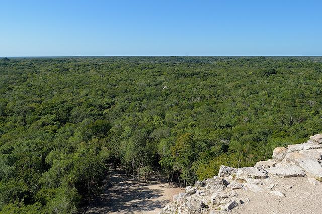 Panorama depuis le sommet de la pyramide Nohoch Mul à Cobá