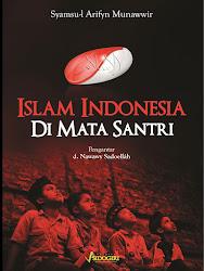 Buku Islam Indonesia