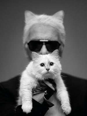 Karl Lagerfeld Choupette Harper's Bazaar