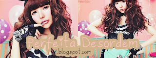 perfeitadesordem.blogspot.com