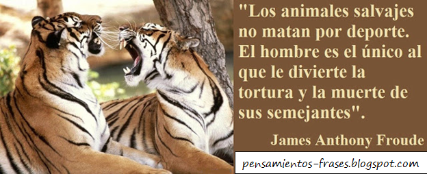 Frases de James Anthony Froude