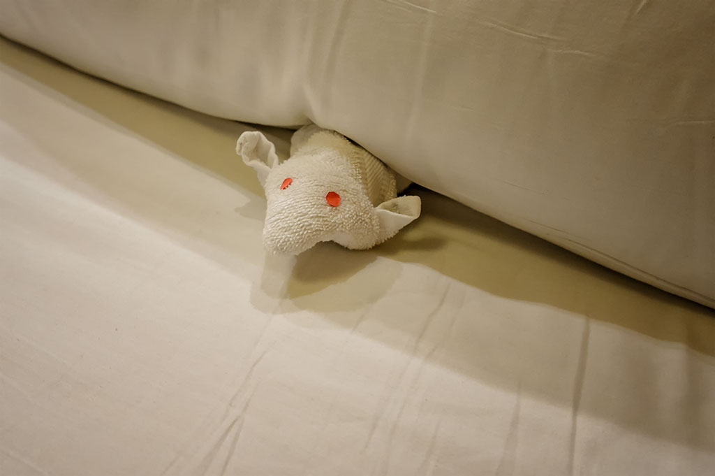 A Cute Towel Mouse Peaks out from Under a Pillow