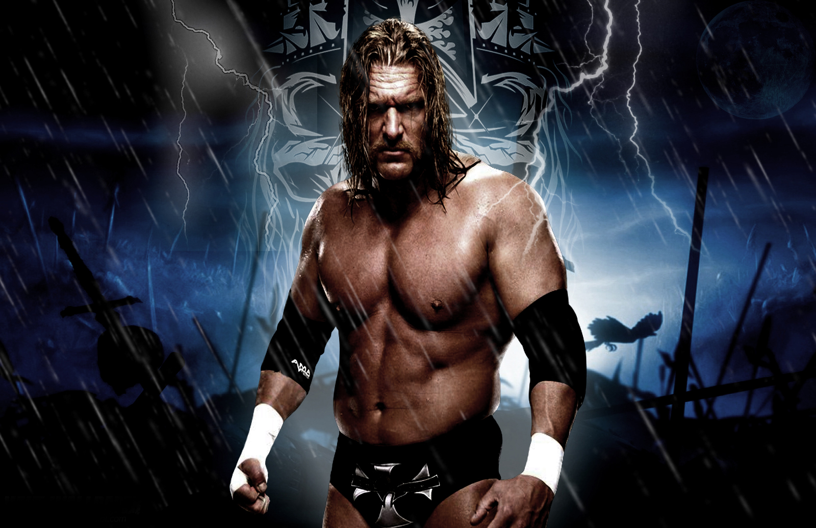 images of triple h - photo #25