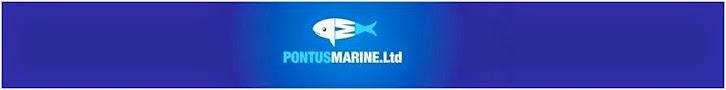 Puntus Marine Limited