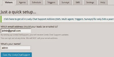 lively chat support setting visitor