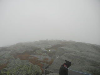 The view from the summit at Camel's Hump State Park during fog