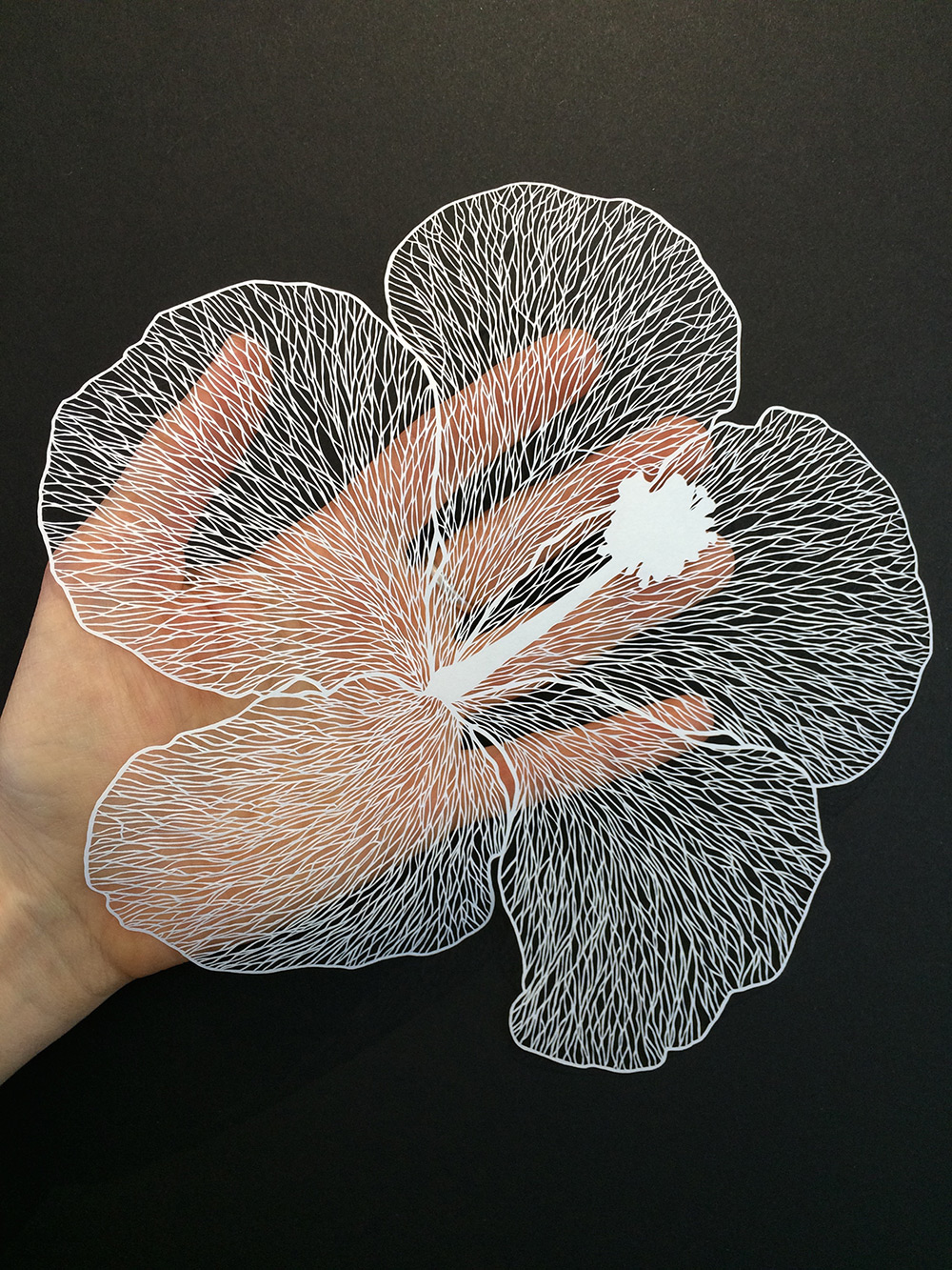 Simply Creative Delicate Cut Paper Flowers By Maude White