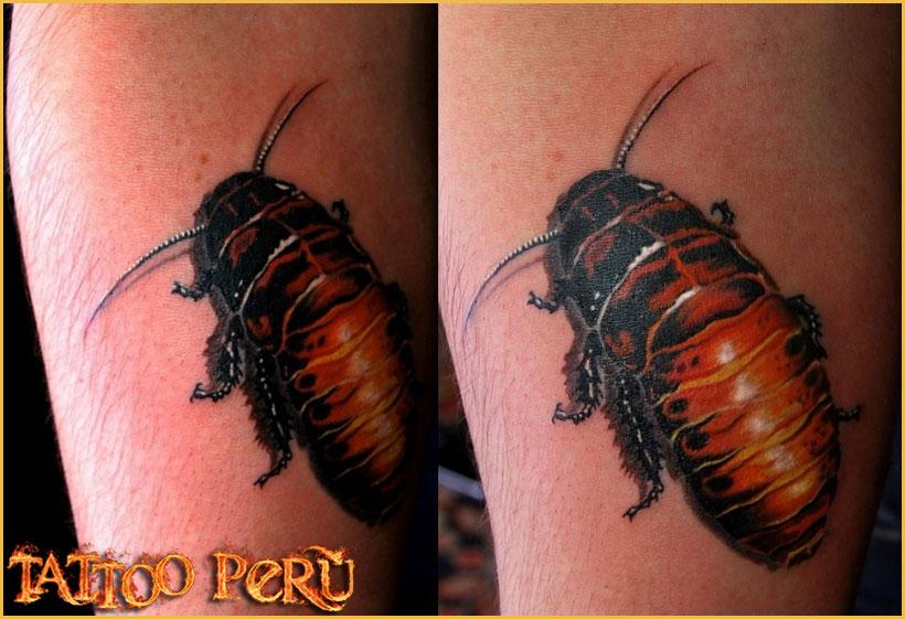 FOTOS DE TATUAJES Tatuajes_de_cucarachas