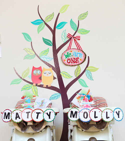 My Owl Barn: Owl Themed Twins First Birthday Party