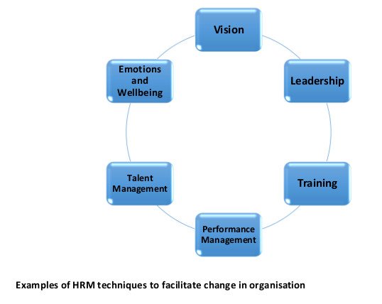 the role of hr in an The role of hr in an automated world hr should play a leading role in helping the company redesign the organization by bringing digital technologies.