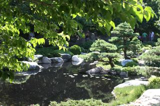 photo of Japanese garden pool at Como Park