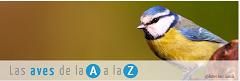 Listado de aves