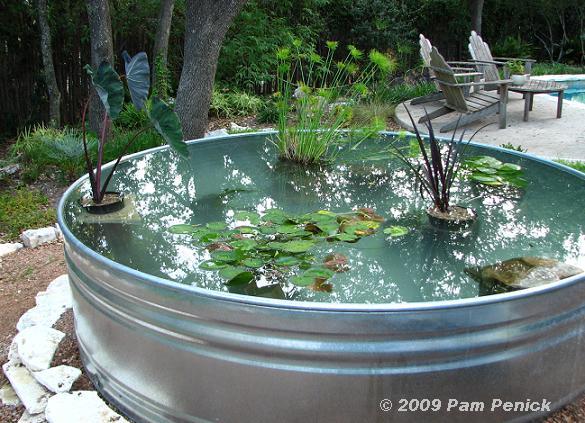The Homestead Jones How To Make A Stock Tank Pond
