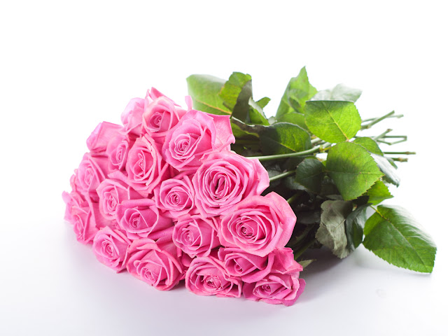 A Bouquet of Pink Roses HD Flower Wallpaper