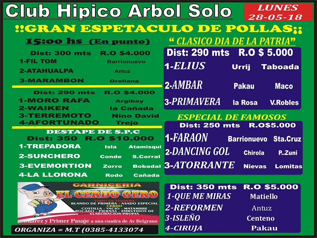 28-05-18-HIP. ARBOL-PROG.