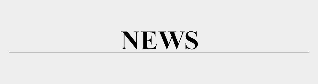 NEWS & INFO | GANZ
