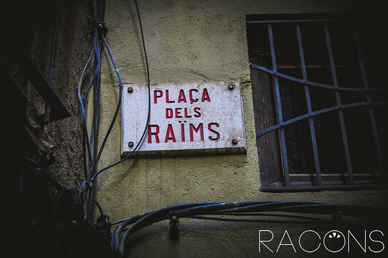 Placa identificadora Plaça dels Raïms Girona