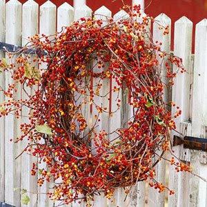 http://2.bp.blogspot.com/-3XCtMb2oREE/UDb2qKl7cXI/AAAAAAAABwU/tQFKUfGQtVE/s400/bittersweet-wreath-bhg.jpg