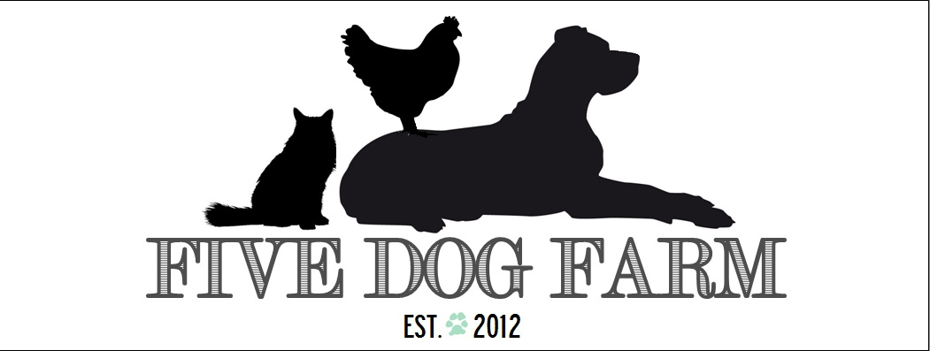 Five Dog Farm