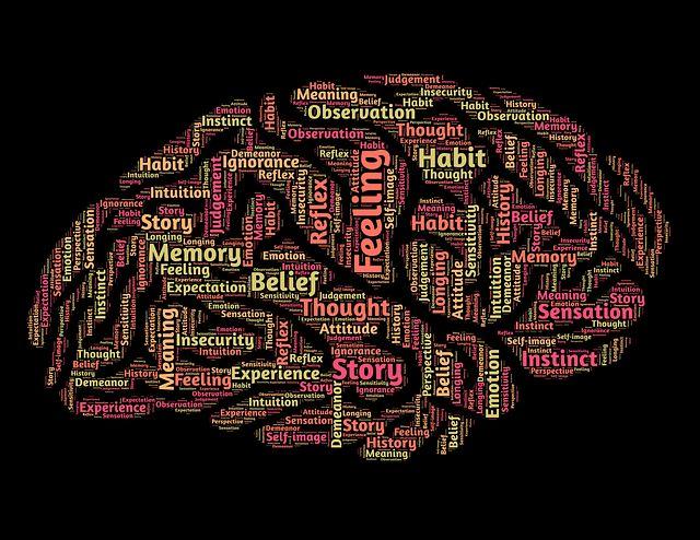 Nutrisi Otakmu