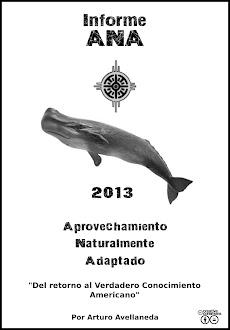 INFORME ANA 2013