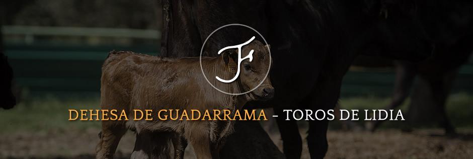 Dehesa De Guadarrama · Toros de Lidia