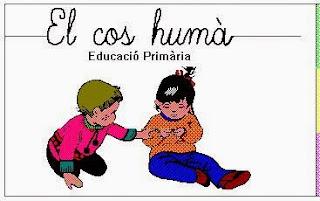 http://clic.xtec.cat/db/jclicApplet.jsp?project=http://clic.xtec.cat/projects/coshuma/jclic/coshuma1.jclic.zip&lang=ca&title=El+cos+hum%C3%A0+2