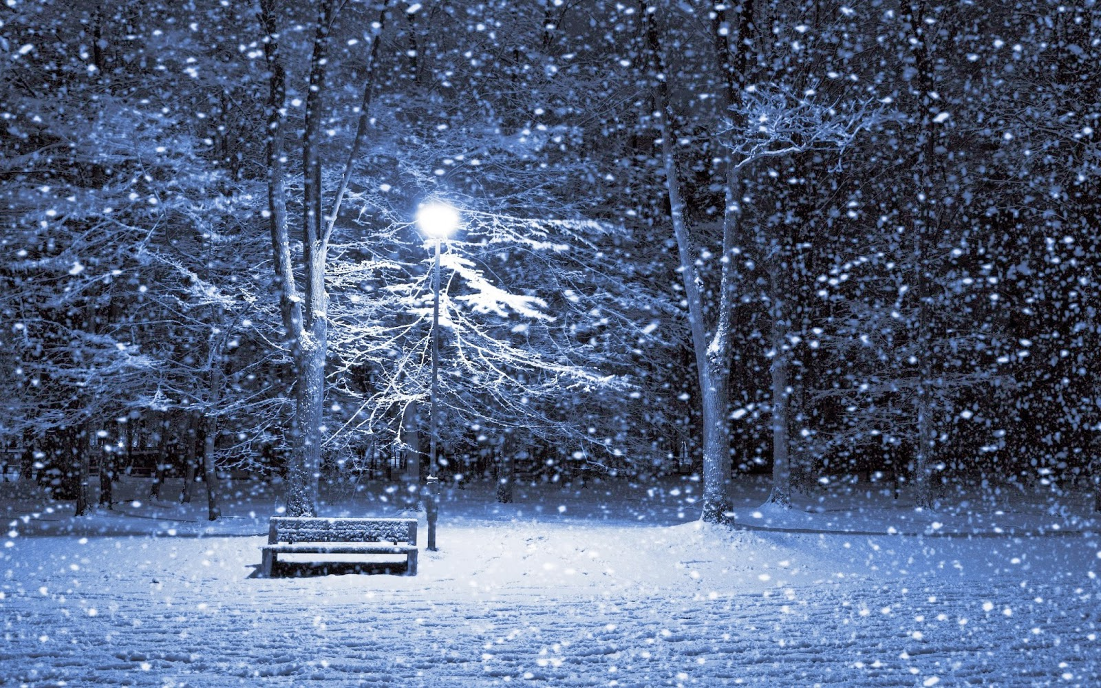 Winter Wallpaper Pictures Free Free Winter Wallpaper Wallpaper