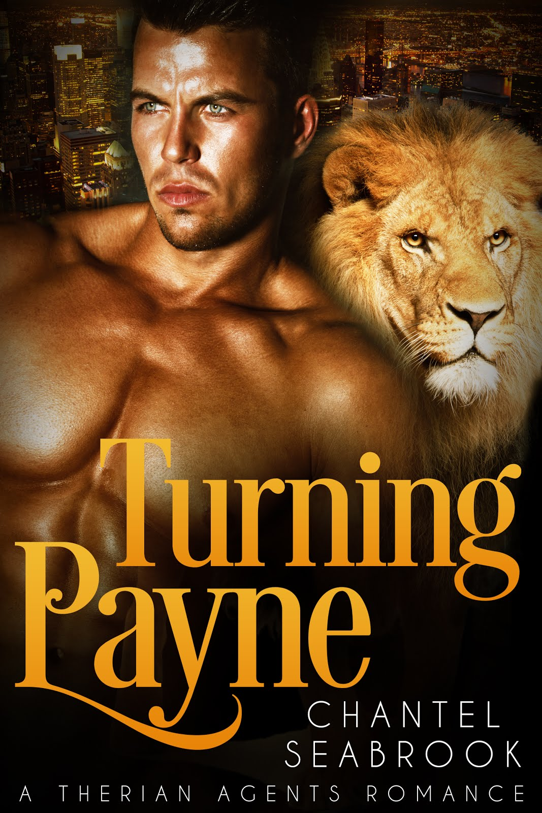 Chantel Seabrook's Turning Payne is a paranormal romance full of sexual tension, action and excitem