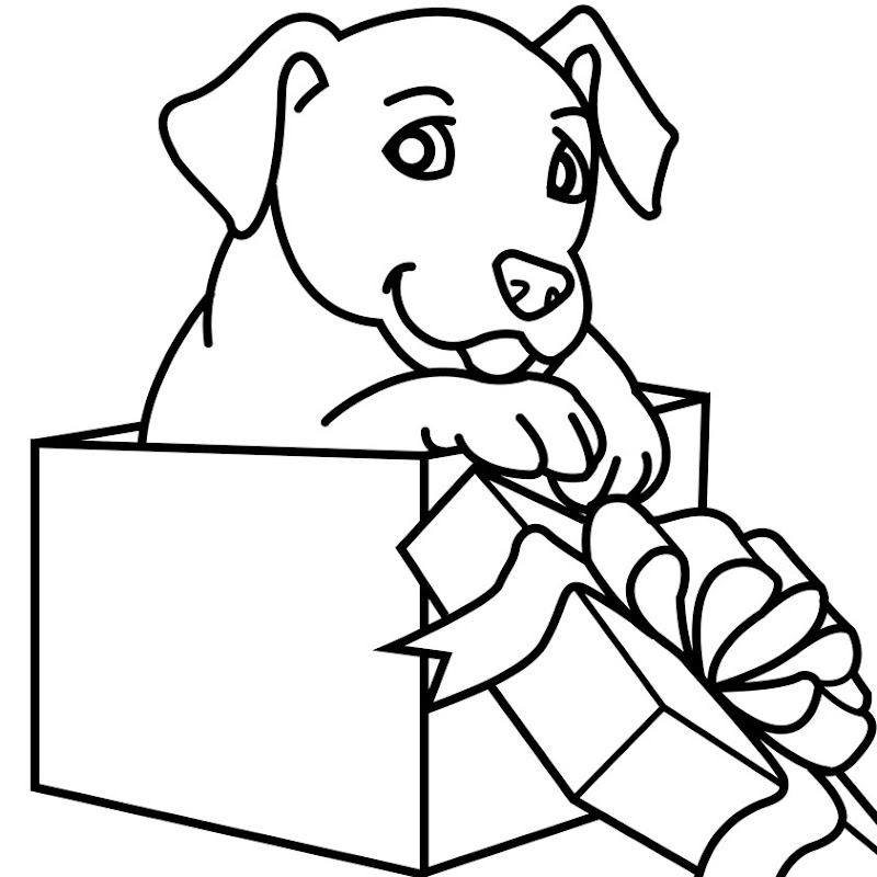 gift box digital coloring book illustration the puppy in the gift box  title=