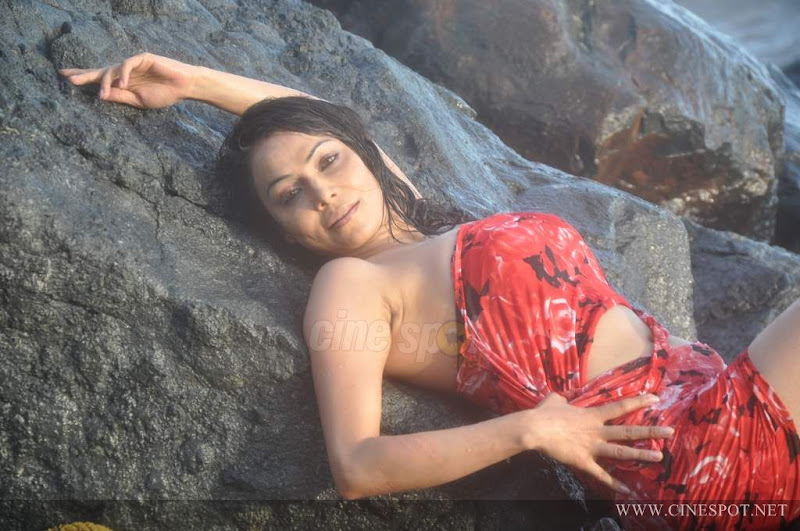 Nikita raval Actress in Swimsuit hot sexy photos pics wallpapers