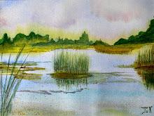 Overzicht Weidsemeren