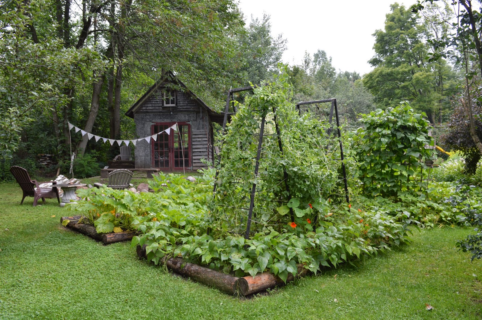 beautiful vegetable gardens content in a cottage