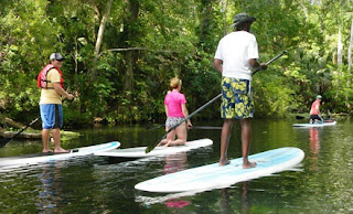 stand up paddle board, SUP, paddleboard, rental, rentals, Gulf Shores, Orange Beach