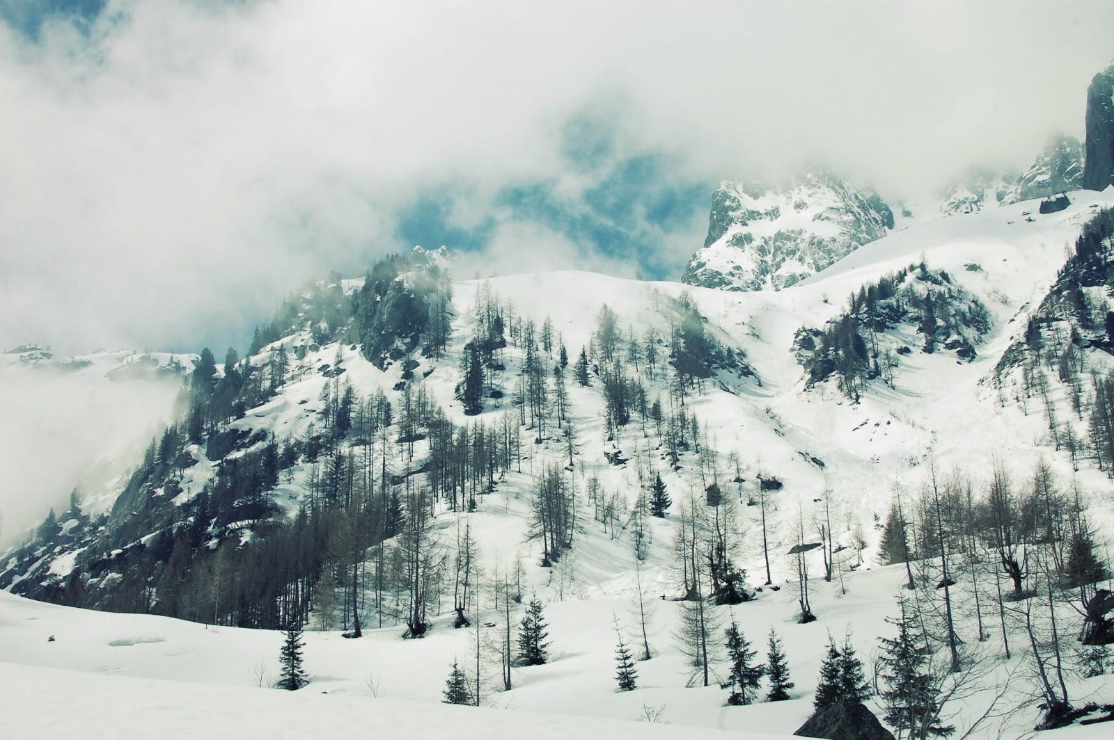 neige-paysage-montagne-sapins-vallorcine-hiver-ciel-bleu